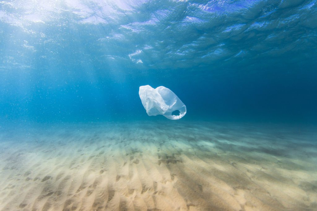 plastic bag pollution in the ocean